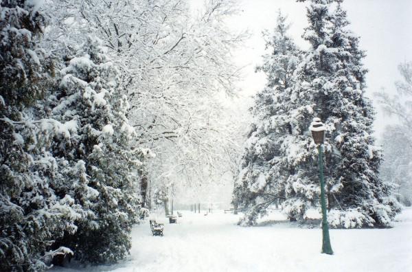 jardin-anglais-sous-la-neige-1