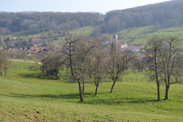 Camp-de-Cesar-32